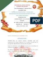 TIC MS WORD DISEÑO ESTRUCTURAL-CARLOS 2017.docx