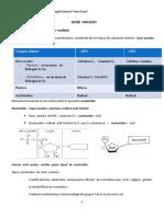 Acizii Nucleici - Adn