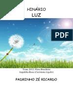 Padrinho Ze Ricardo - Luz