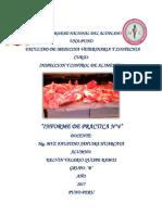 informe de inspeccion alimentos