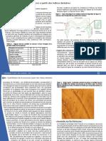 ramirezrozzi.pdf
