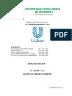 Historia de Unilever Mercadotecnia 1