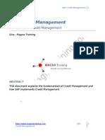 24613908 SAP Credit Management