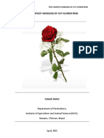 POST_HARVEST_HANDLING_OF_CUT-FLOWER_ROSE.pdf