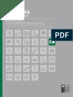 curriculum electronica.pdf