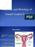 2- Anatomy and Histology of Female Genital Tract
