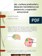 EXPO-NEUROfinal-final.pptx