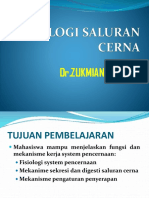 Fisiologi Pencernaan New