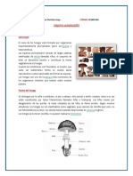 CUARTA ASIGNATURA EPIDEMIOLOGIA.docx