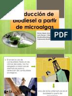 Producción de Biodiesel a Través de Microalgas