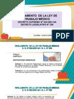Ley de Trabajo Medico - Javier Lermo Elisabeth