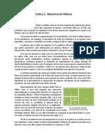 (797590928) MCMPractica 3-20120213.docx