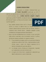 Acuerdo Conciliatorio Tacuri Lurquin