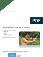 farmacos no despoarizantes pg465katzung.pptx
