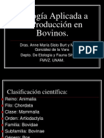 BOVINOS