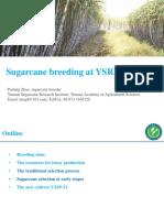 Sugarcane Breeding at YSRI - Peifang Zhao