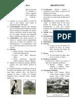 REGIÓN CHALA.docx