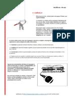 Crónica - caracteristicas.pdf