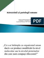Ribozomii Și Patologii Umane