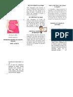 Licencia de Maternidad Natalia Angie