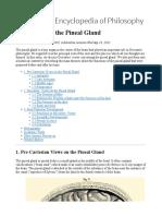 Descartes Pineal Gland
