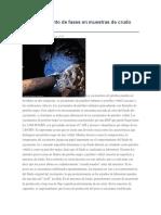 Comportamiento de fases en muestras de crudo negr1.docx