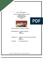 Ambuja Report