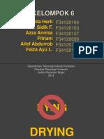 231717400-Flash-Dryer.pptx