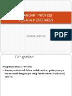 1. Std Profesi