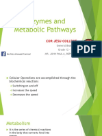 Enzymes and Metabolic Pathways