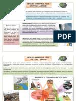 2 Impacto Ambiental y Los Efectos a La Salud