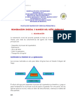 quemados HIU RAFAEL HEANO TORO.pdf