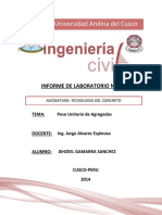 informe6-141111190618-conversion-gate01.docx
