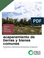 Amigos de la tierra. ACAPARAMIENTO en Argentina.pdf