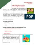 Vias_aereas_CTI_2010.pdf