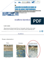 4.1 Monitoreo en acuiferos karsticos.pdf