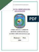 Derivados Del Aguaymanto