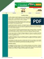 Guerrillas en México-jherrerapeña.pdf