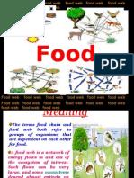 Final Food Web