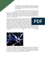 Modeling Human Brain