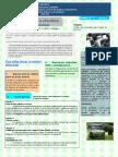 Boletin N 7 Activos en Desuso