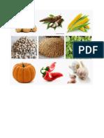 alimentación y hierbas medicinales pueblos originales.docx