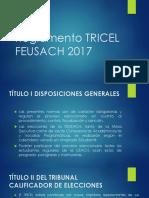 Presentación reglamento tricel y calendario