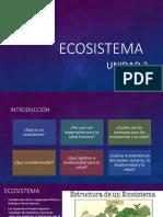 3.Ecosistema