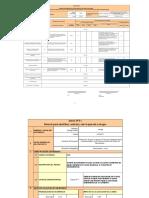 Formatos - Pozo 315