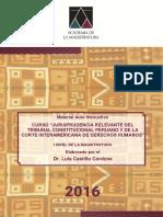 Material Tratado de Jurisprudencia Relevante Tc y Cidh- i Nivel Profa (1) (1)