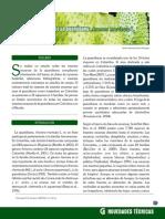 guanabana coccidos.pdf
