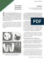 Principales Plagas Guanabano en Venezuela