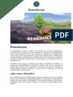 1.- Remediación.docx