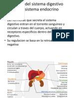 Relacion Digestivo y Endocrino